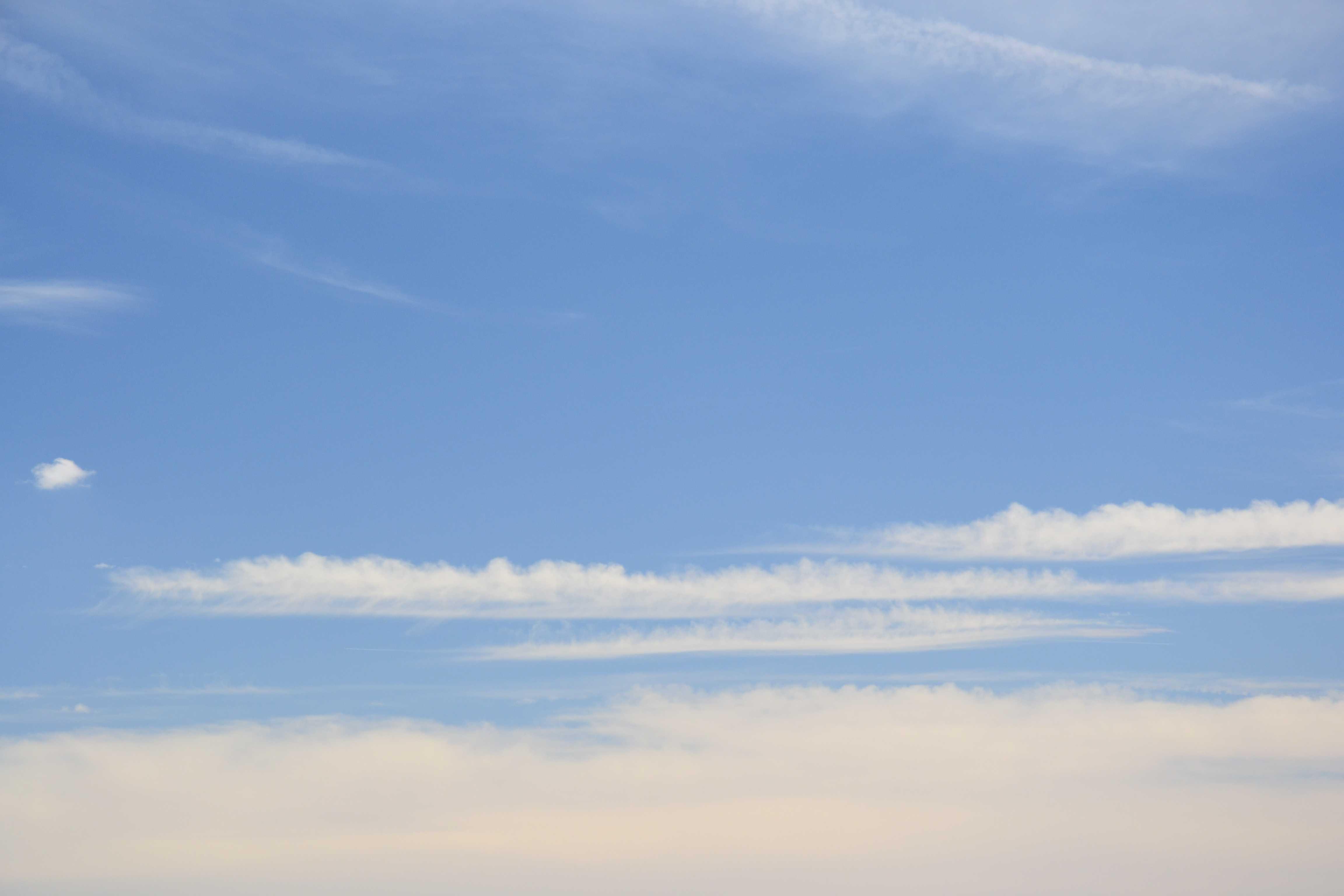 cirrus castellanus ci cas international cloud atlas